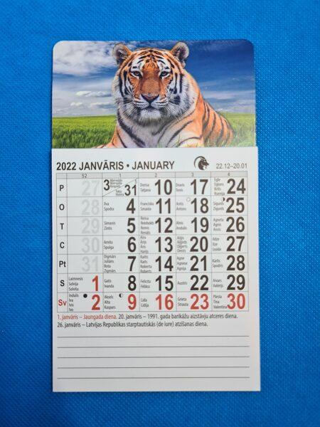 Латышско-английский отрывной календарь на магните на 2022 год. Тигр